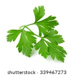 fresh parsley isolated on white | Shutterstock . vector #339467273