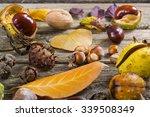 Fallen Autumn Growths And...