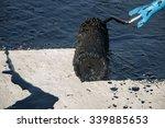 roofer worker painting black... | Shutterstock . vector #339885653