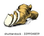 drawing of ginger's root on the ... | Shutterstock .eps vector #339934859