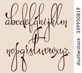 handwritten pointed pen ink... | Shutterstock .eps vector #339950819