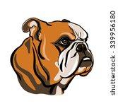 portrait of english bulldog.... | Shutterstock .eps vector #339956180