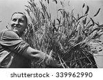 woman collective farmer with... | Shutterstock . vector #339962990