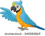 cartoon macaw presenting... | Shutterstock .eps vector #340083869
