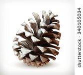 Winter  Pine Cone Vector Icon