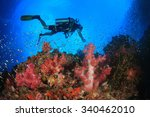 scuba diving coral reef... | Shutterstock . vector #340462010