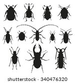 Colorful Insects Vector Black...