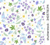 floral pattern with garden... | Shutterstock .eps vector #340578194