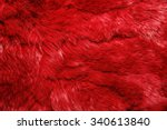 Close Up Of Lapin Colored Fur...