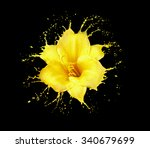 bright flower with yellow... | Shutterstock . vector #340679699