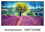 lavender | Shutterstock . vector #340726088
