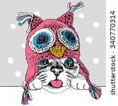 portrait of a cat in pink owl... | Shutterstock .eps vector #340770314