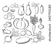 set vegetables  black outline... | Shutterstock .eps vector #340793180