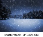 view of night park and many... | Shutterstock . vector #340821533