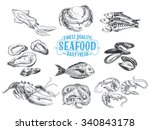 vector hand drawn illustration... | Shutterstock .eps vector #340843178