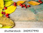 colorful autumn leaves and hip... | Shutterstock . vector #340937990