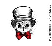 vector owl in a  hat and red... | Shutterstock .eps vector #340982120