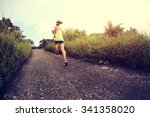 young fitness woman runner... | Shutterstock . vector #341358020