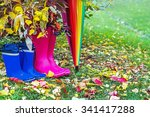 autumn. two pairs of rubber... | Shutterstock . vector #341417288