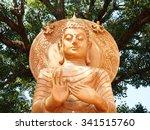 buddha face | Shutterstock . vector #341515760