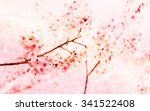 Soft Blurred Of Sakura Pink...
