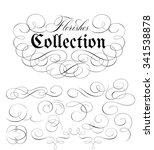 calligraphic florishes... | Shutterstock .eps vector #341538878