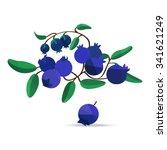 blueberries and leaves | Shutterstock .eps vector #341621249