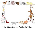 frame of various dogs and cats... | Shutterstock .eps vector #341694914