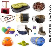 Stock photo group of cat accessories 341750180