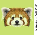 Red Panda Rare Animal Cute Face....