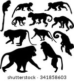 set of silhouettes of monkeys | Shutterstock .eps vector #341858603