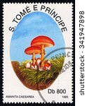 Small photo of SAO TOME AND PRINCIPE - CIRCA 1993: A stamp printed in Sao Tome shows Amanita Caesarea, Mushroom series, circa 1993
