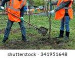 two workers in orange overalls... | Shutterstock . vector #341951648