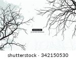 Stock vector trees and branches silhouette in aqua detailed vector illustration forest banner 342150530