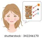 damaged hair woman. damaged... | Shutterstock .eps vector #342246170