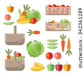 ingathering concept. vegetable... | Shutterstock .eps vector #342361289