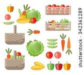 harvesting  fresh vegetables in ... | Shutterstock .eps vector #342361289