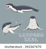 Leopard Seal Cartoon Vector...
