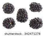 Blackberry Fruit Set Closeup...