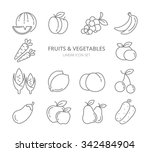 fruits and vegetables linear... | Shutterstock .eps vector #342484904