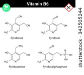 chemical structures of vitamin... | Shutterstock .eps vector #342505244