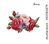 bouquet of roses  watercolor ... | Shutterstock . vector #342581879