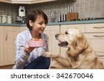 Stock photo owner giving golden retriever meal of dog biscuits in bowl 342670046