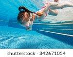 underwater photo of adorable... | Shutterstock . vector #342671054