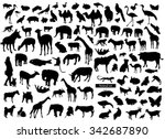 Stock vector set of animals silhouettes 342687890