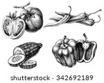 vegetables isolated set  etch...   Shutterstock .eps vector #342692189