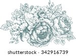 vector illustration floral... | Shutterstock .eps vector #342916739