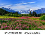 Small photo of Juneau, Alaska. Mendenhall Glacier Viewpoint with Fireweed in bloom.