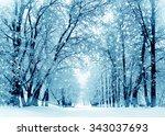 Winter Scenery  Frosty Trees In ...