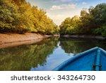 Kayaking In Mangrove Tunnels I...